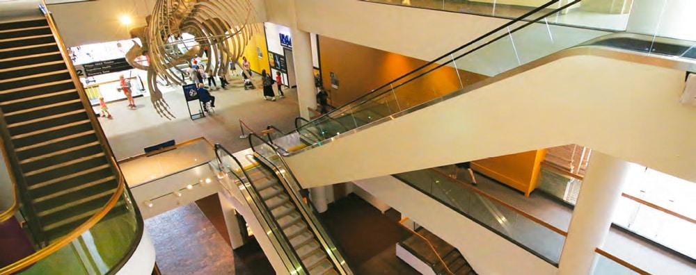 The-Denver-Museum-of-Nature-&-Science-Denver-Colorado